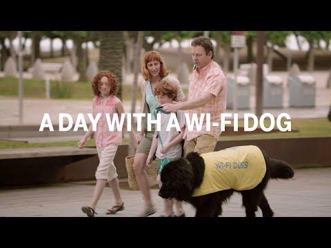 wifidog